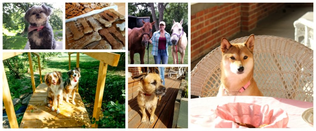 Pet Friendly Whispering Pines Furry Guest Collage